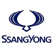 Ssangyong beste Alarmanlage und Ortungssystem Nachrüstung in Berlin